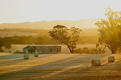 sandycreeek barossavalley sunrisesandycreek farm hay stubble ruin abandoned stone south australia sunrise summer