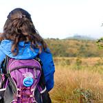 12 Viajefilos en Sri Lanka. Nuwara Eliya 09