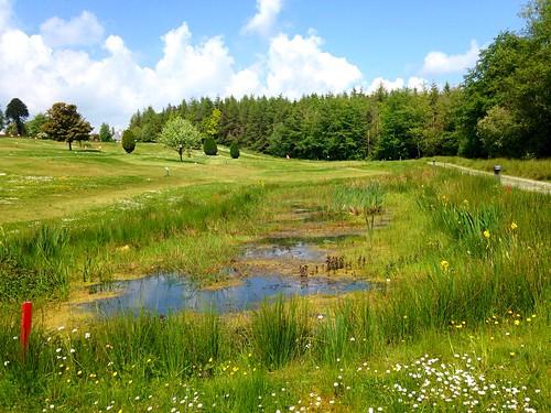 golfcourse pitchandputt greens pond waterhazard yellowflagiris iphone5 2016onephotoeachday path scenery flowers newmarket cork ireland irish water lake