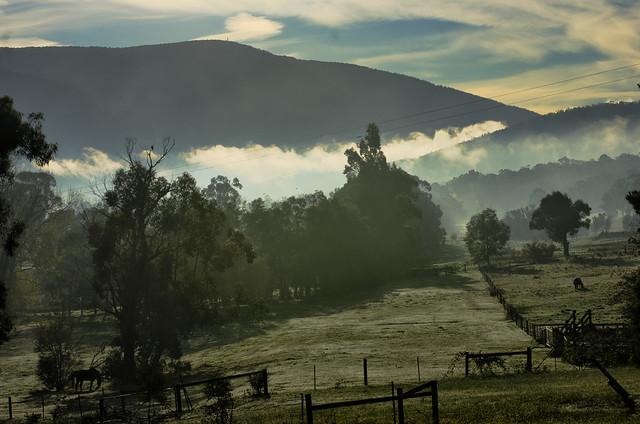 Yarra Valley (Explored)