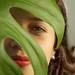 MIC_5194.jpg by Michel Rios