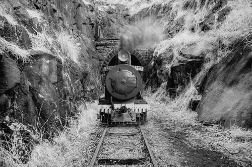 park forest train john bush forrest australia tunnel steam national perth western shire zigzag westernaustralia mundaring johnforrestnationalpark kalamunda swanview