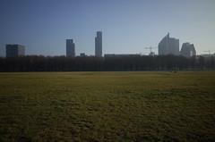 Malieveld, Den Haag