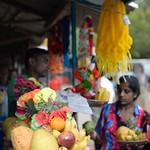 14 Viajefilos en Sri Lanka. Yala 41