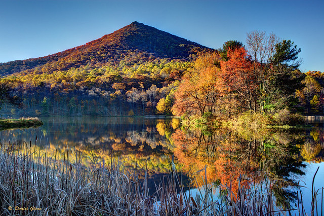 Fall Colors in the morning at Abbott Lake