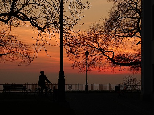 trees sunset sky nature spring colours view silhouettes poland polska płock