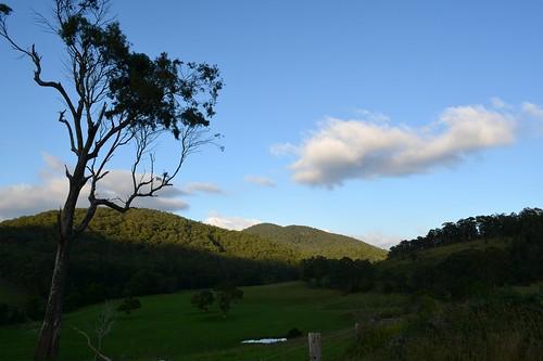 morninglight australia valley nsw australianlandscape cloudshadow buladelah midnorthcoast morninglandscape myallrivervalley blackcampcreek