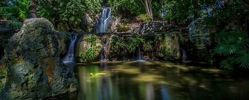 forest waterfall australia westernaustralia