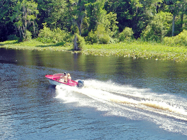 Boat on Withlacoochee River, Dunnellon