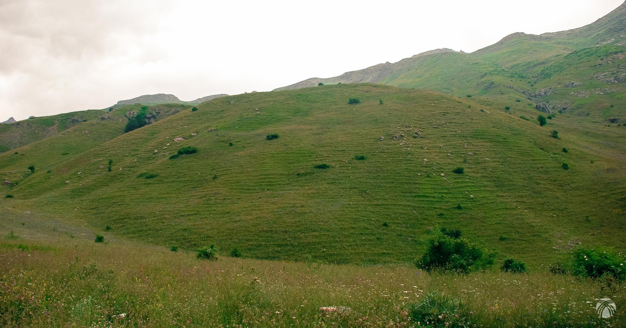 Ladera herbosa por la que nos hemos escapado