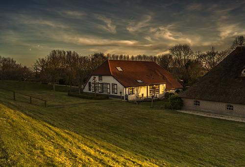 trees sunset sky cloud sun color colour netherlands colors clouds farmhouse contrast landscape colours bright farm sony nederland land goldenhour gelderland culemborg 100149faves provinciegelderland wimvandem