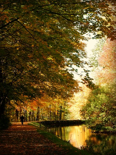 autumn trees water leaves reflections landscapes october foliage quotes feedercanal glensfallsny