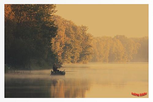 lake fog sunrise landscape boot see boat fisherman nebel herbst earlymorning landschaft wald sonnenaufgang fischer frühermorgen naturparkmaasschwalmnette vennekotensee elmpterschwalmbruch schaefernrw