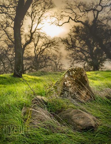 california conracosta county clayton marshcreek brentwood concord walnutcreek outdoor hills bokeh dof pentax dfa55 28 rocks moss rain trees forest woods fog sun sunrise sunset mikeoria