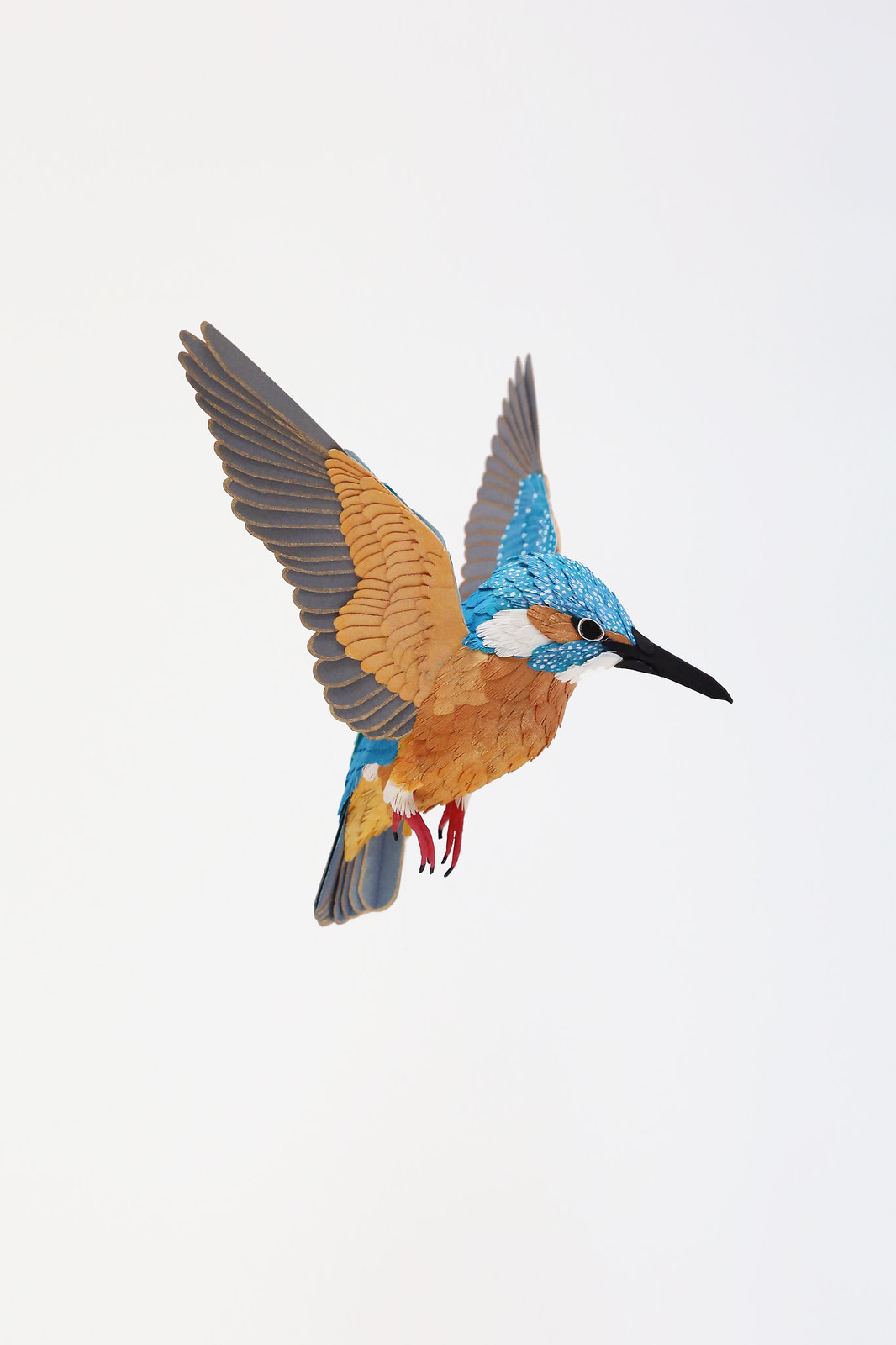 Incredibly Realistic Paper Bird Sculptures
