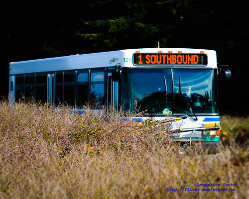 Island Transit Route 1 Bus & the OLF Coupeville Weeds