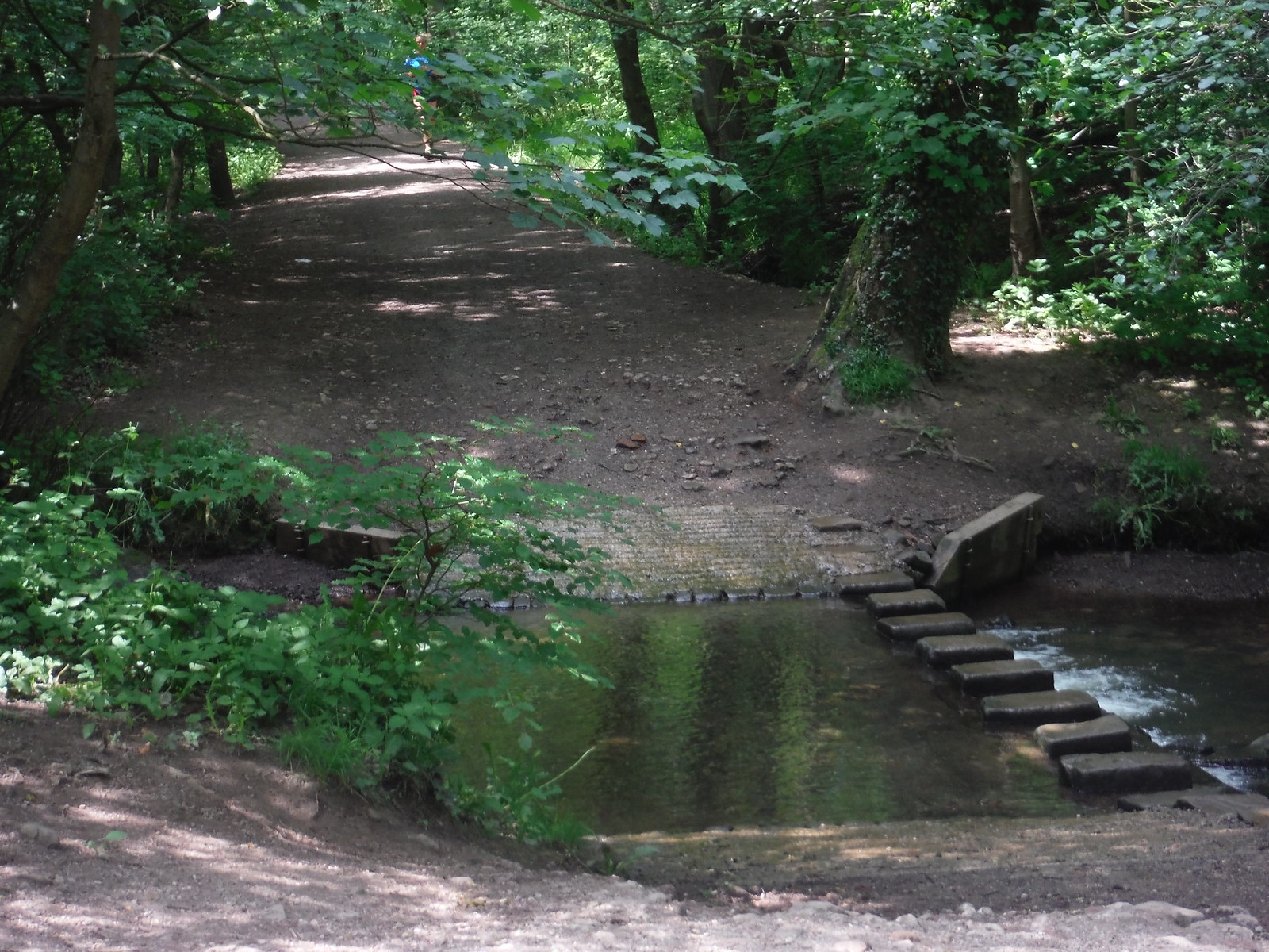 Stepping Stones in Bingham Park SWC Walk 267 - Sheffield Circular (via Porter, Limb, Sheaf and Gleadless Valleys)
