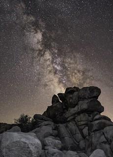 Milky Way rising over Joshua tree national park