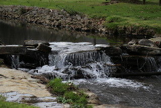 Water From Dickel's Source | by ReeseCLloyd