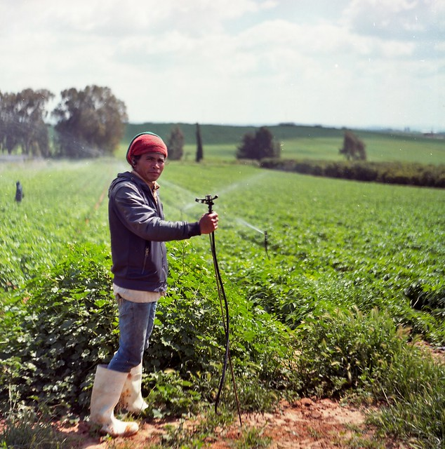 migrant worker in the field