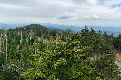 panorama view hiking pano panoramic vista gsm clingmansdome greatsmokymountains greatsmokymountainsnationalpark highestpoint jennypansing