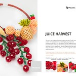 Trends SS 2016 - Juice Harvest