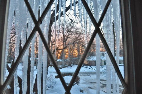 morning trees winter usa snow sunrise us illinois nikon lincolnshire icicles d90 stevelamb