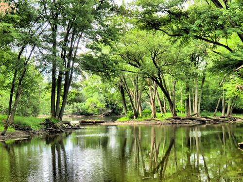 Fox River slough HDR 20160705