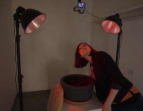 Worm Selfie Booth in action #wormculture #wormselfie
