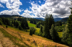 The road to Feldberg, Black Forest