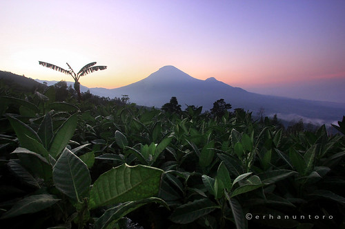 mountain sunrise canon landscape dieng wonosobo amazingindonesia indonesiakeren explorejateng explorecentraljava