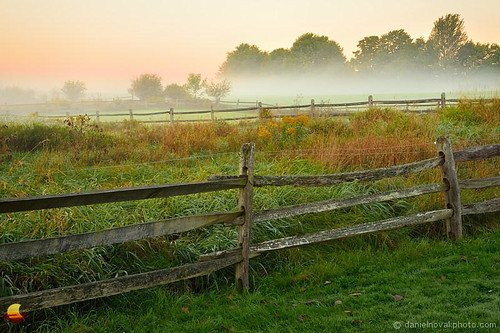 statepark park morning autumn wild ny fall colors grass fog sunrise fence landscape outdoors photo buffalo glow moody foggy picture meadow fresh photograph eastaurora 2015 knoxfarm etbtsy