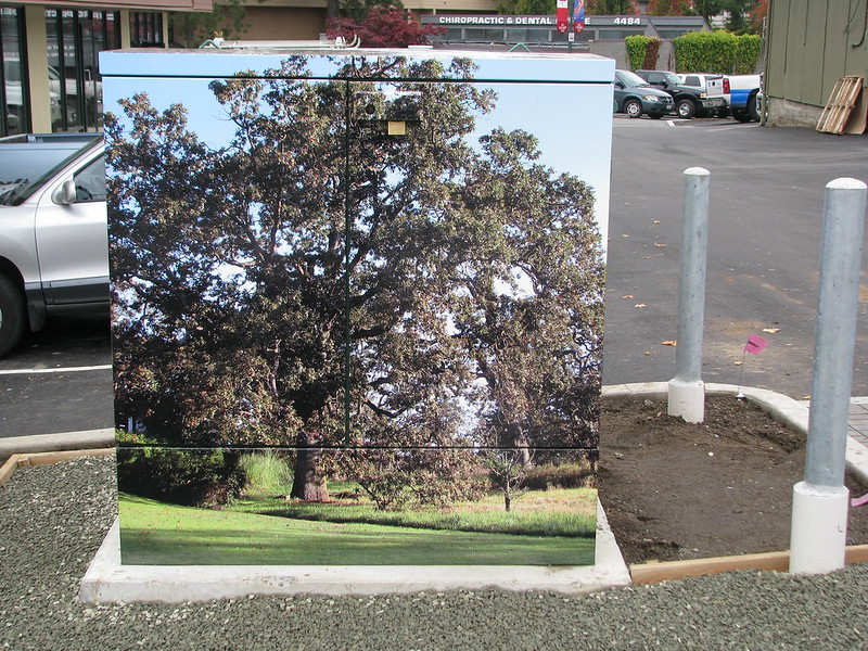 Hydro Wrap Royal Oak utility box wrap