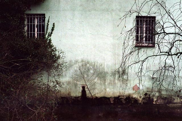 Wand - I shot film