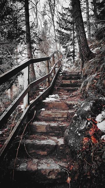 Stepping Through Nature