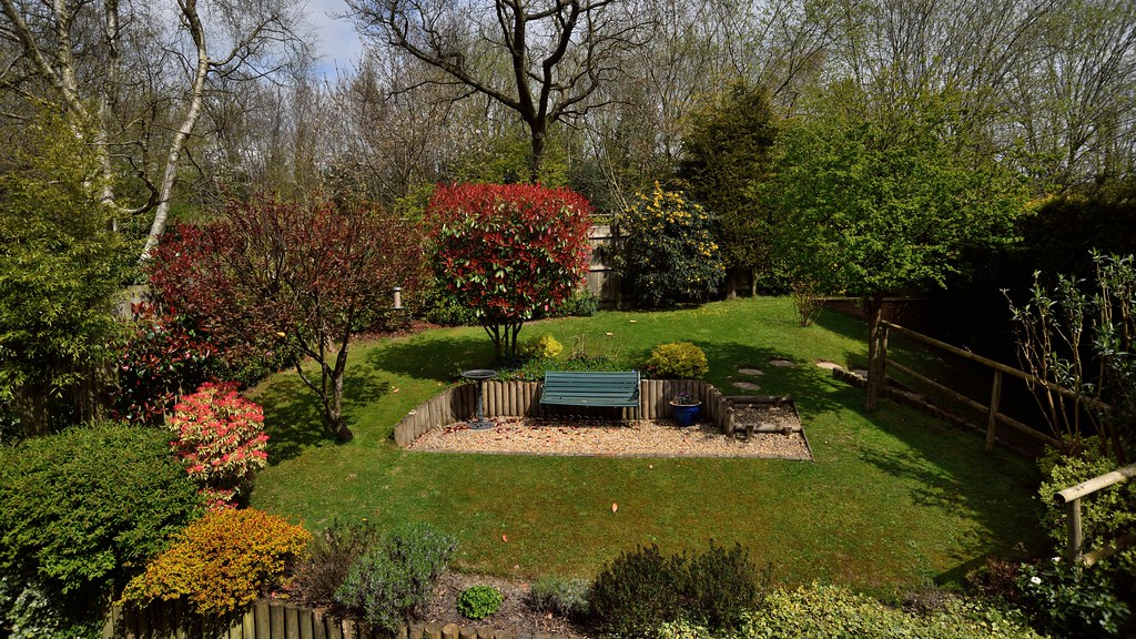 A garden with trees and a bench.