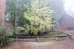 Quilt Retreat Spring 2015 (46 of 108)