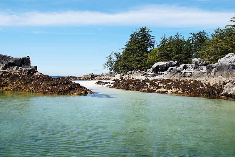 Bunsby Islands, Big Bunsby Marine Park, Vancouver Island, British Columbia. Photo: Santa Brussouw.