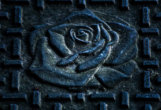 Dark Metal Rose