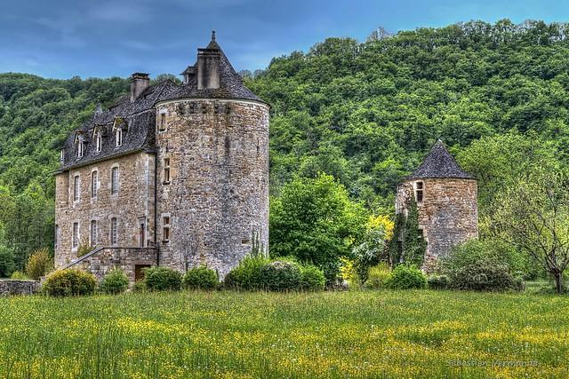 Castle in the meadown