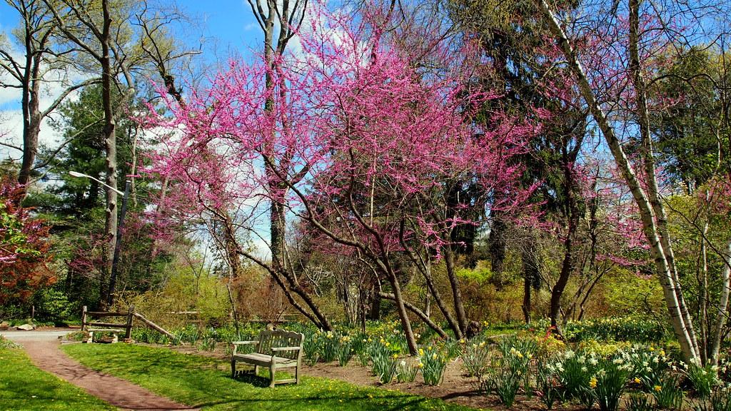 Sayen House and Gardens, Hamilton, NJ