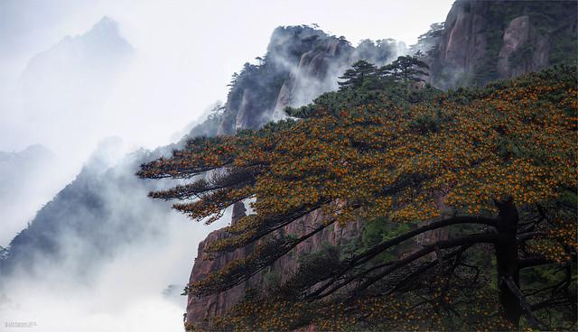 Mountain of Mist.