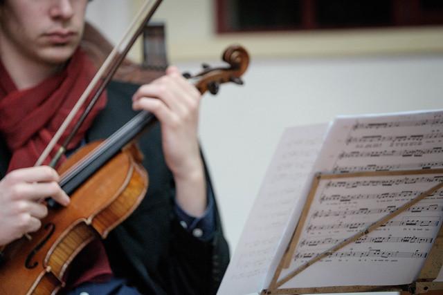 F0397 ~ the violin player
