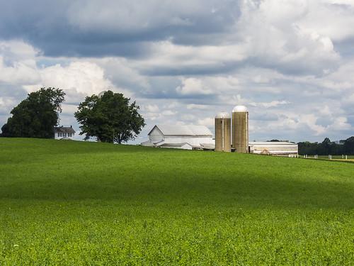 ohio green field barn rural landscape geotagged nikon raw farm country coolpix nrw cs6 waynecountyohio p330