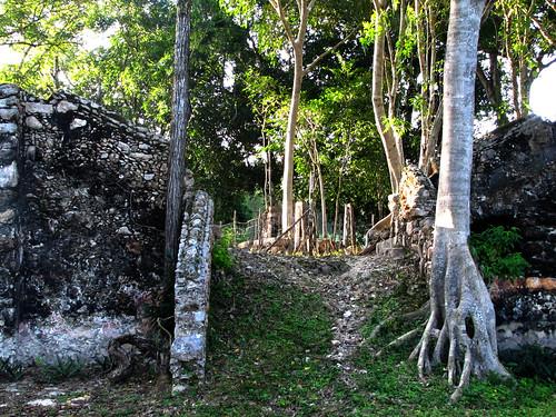 Hacienda Ruins 2079pr2