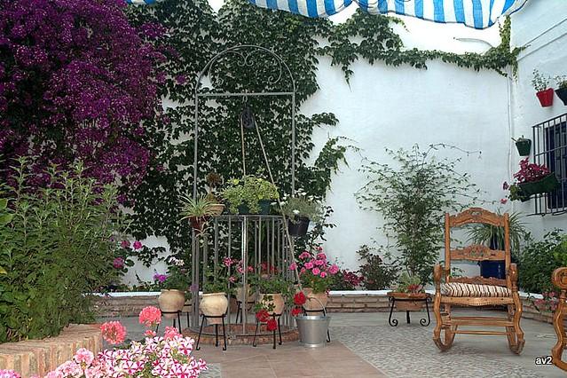Patio:el pozo,la mecedora y las flores