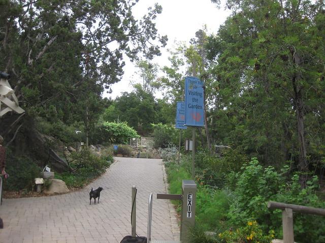IMG_2696 Santa Barbara Botanic garden art