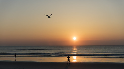 ocean usa sun men beach water silhouette sunrise sand florida atlantic fl atlanticocean jacksonvillebeach 2016 unitesstates