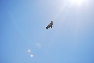 616 Overhead | by umotamba
