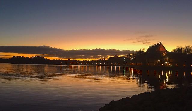 Golden Florida Morning